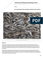 Advocate.gaalliance.org-Critical Decisions for Shrimp Harvesting and Packing Part 2