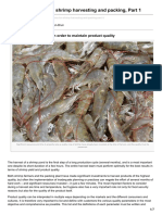 advocate.gaalliance.org-Critical decisions for shrimp harvesting and packing Part 1.pdf