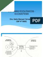Ecosistema (1)