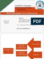 Anormalidades de La Memoria. GRUPO 6B Anual.
