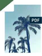 Casa de Praia. Roteiro Adaptável (Filme)_ Paulo Vitor Grossi (2018)