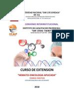 GUIA Diplomado Hemato Oncologico 2018