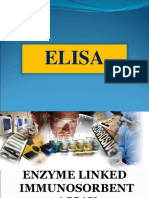 Elisa Final