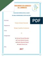 TERAPIA-DE-SOLUCIÓN-DE-PROBLEMAS.pdf