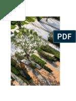 landscapearchitecture.docx