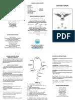 Santísima Trinidad..pdf