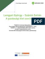 Lengyel György Szántó Zoltán A gazdasági élet szociológiája