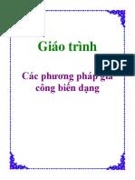 cac phuong phap gia cong bien dang.pdf