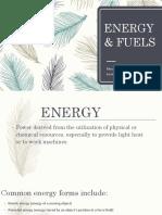 Energy Fuels Report 20178