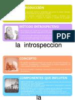 Conceptos Introspeccion
