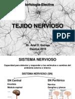 Tejido Nervioso Electiva 2015