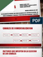 CANALES DE COMERCIALIZACION DE LA YUCA.pptx