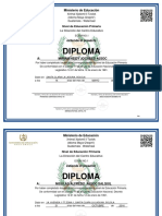 Diploma Nivel Primerio