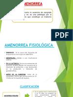 Amenorrea Original