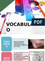 vocabuario