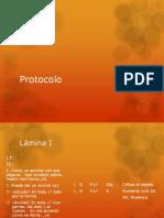 Protocolo Con Areas