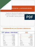 BIOQUÍMICA I  -  TEORIA - TEMA 2.pptx
