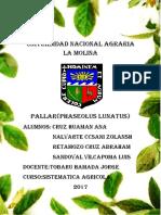 phaseolus lunatus (1)