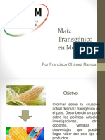 Maíz Transgénico en México
