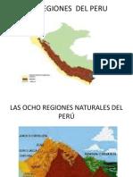 Ocho Regiones