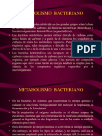 8) Met Bact Dr Barletta