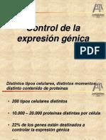 6-Control de La Expresión Génica