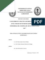 327072325 Proyecto de Investigacion Cq Munoz y Arellano