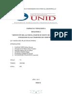 Investigacion Glucolisis Uva