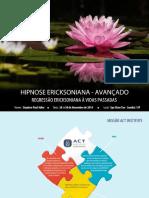 vidas-passadas.pdf