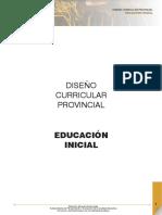 DCP-Inicialmendoza.pdf