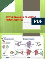 Efector Mechanism of Adaptive Immune Response