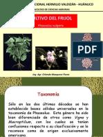 CLASE. 02- Culitivo del frijol.pptx