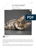 Tercer párpado en gatos - Causas y tratamiento.pdf