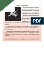 Articulos Informativos EL ESPACIO