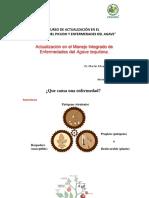 Manejo_Integrado_de_Enfermedades_Martin_E_Avila_Miranda.pdf
