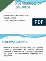 Proceso Del ArrozDIAPOSITIVAS