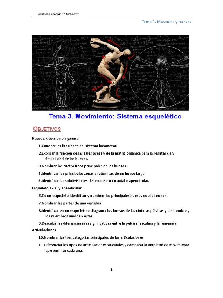 Anat 03a Huesos y Articulaciones Tema