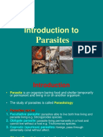 4 Parasites