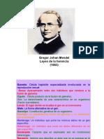 160129790-Clase-3-Genecc81tica-Mendeliana.pdf