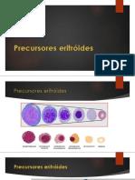 6. Precursores eritroides