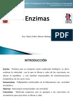 Unidad 3 Enzimas_parte I