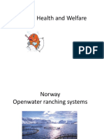 Animal and Human Health in Fish Farming