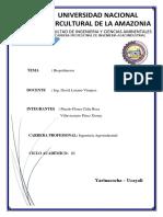 Biopolimeros Bioquimica Copia