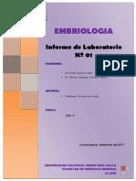 INFORME+Nº+01+-LAMINAS+DE+LABORATORIO