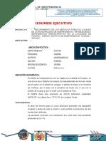2.- RESUMEN EJECUTIVO  NUEVO.doc