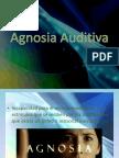 126283126-Agnosia-Auditiva.pptx