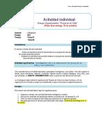 GUIA DE TRABAJO INDIVIDUAL (1).pdf