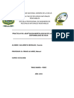 ADAPTACION MORFOLOGICA.docx