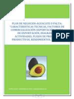 PLAN_DE_NEGOCIOS-AGUACATE_O_PALTA_CARACT.pdf