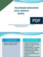 PEDOMAN PKPR (1)